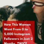 get followers instagram