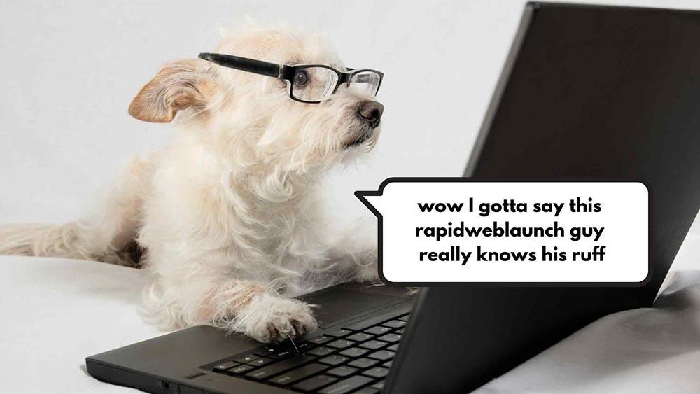dog learning web design 1